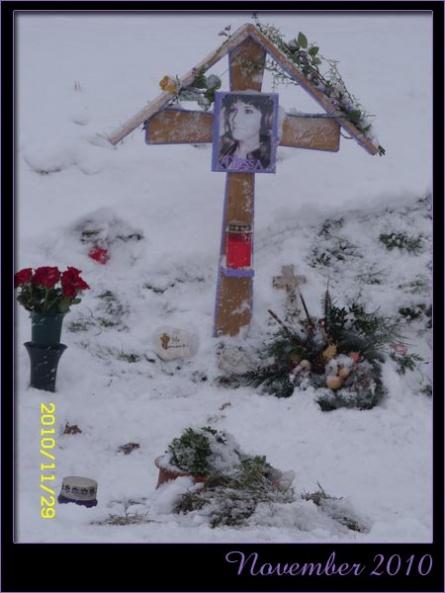 17a_november2010