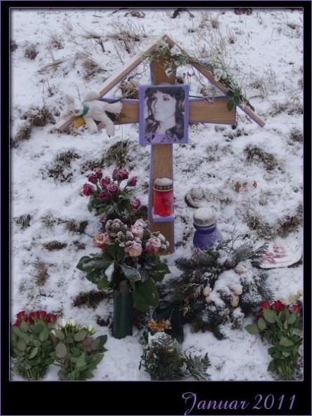 21_januar2011