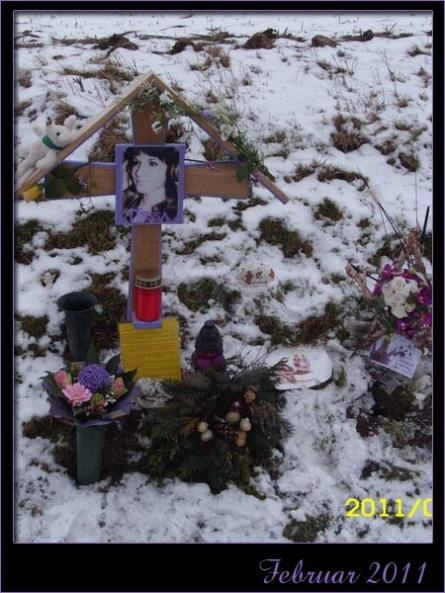 22_februar2011