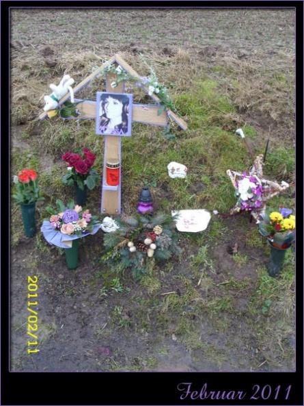 23_februar2011